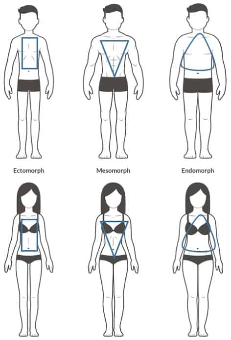 3 body types
